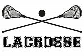 Lacrosse sticks and ball. Flat and silhouette style. Sport Equipment Front View. Vector illustration isolated on white background. poster