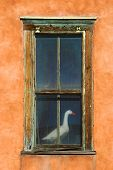 stuffed goose behind an old window in an adobe building in santa fe. poster