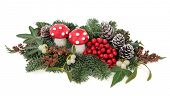 Christmas flora with fly agaric mushroom baubles, holly, mistletoe, ivy, pine cones and traditional greenery over white background. poster