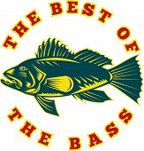 "illustration of a sea bass fish viewed from side with words ""the best of the bass"" done in retro woodcut style poster"