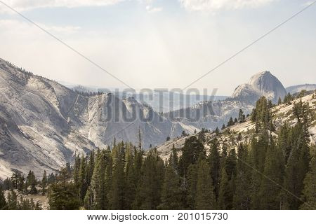 Half Dome Peak In Yosemite Landscape