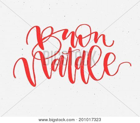 Buon Natale. Merry Christmas handwritten calligraphy in Italian. Greeting red typography on gray background. Vector Illustration hand drawn Lettering.