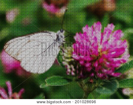 Illustrations. Cross-stitch. White butterfly on a flower of red clover.