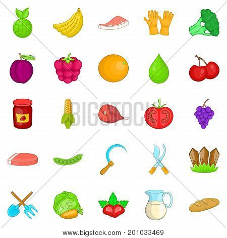 Plantation icons set. Cartoon set of 25 plantation vector icons for web isolated on white background