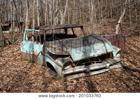 An old rusty blue car abandoned for decades in the forest