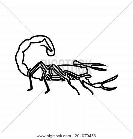 Scorpion Black Color Icon .