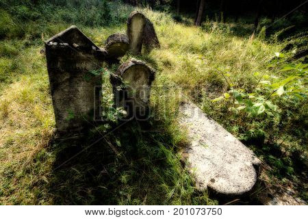 Old Abandoned Jewish Cemetery. (blurred Effect Illustration)