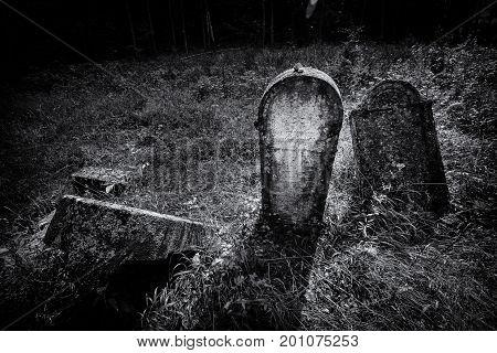 Old Abandoned Jewish Cemetery (bw Illustration)