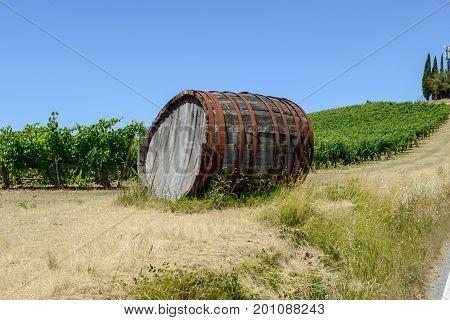 Chianti Wine Barrel On A Wineyard In Tuscany