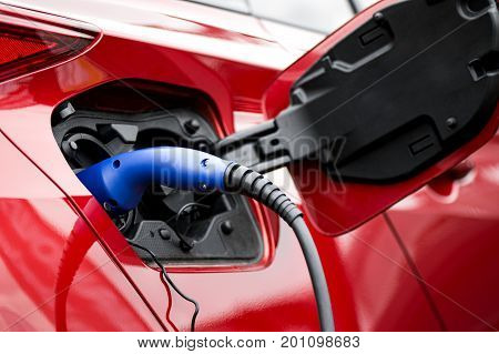 Close-up of power plug in electric car