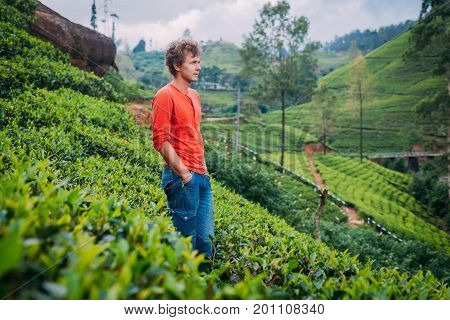 A Curly Man Walks Through Tea Plantations In The Mountains Covered In A Green Tea And Admires. Touri
