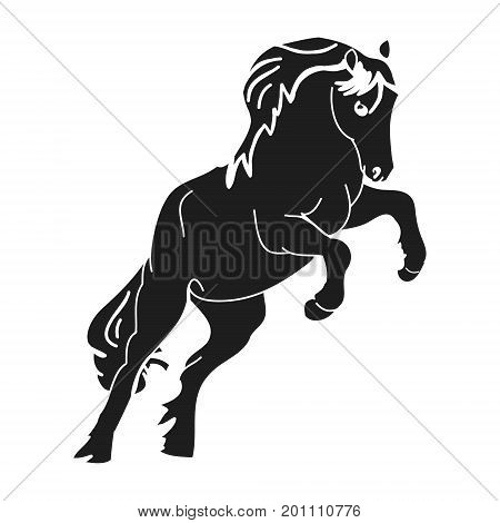The horse stood on its hind legs. Black silhouette of a prancing stallion on a white background vector