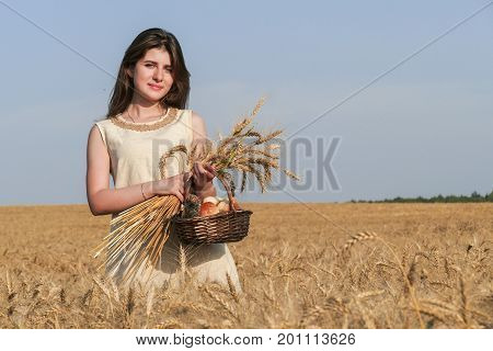 Young attractive woman in beatiful natural dress walking with basket with bread in the golden wheat field during the sunshine.