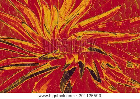 Crazy hallucinogenic whirlpool. Abstraction a flower of red color.