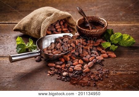 Cocoa concept with raw peeled and crushed Theobroma cacao cocoa beans