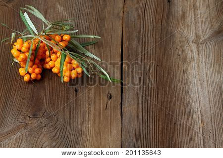 Sea buck thorn berries Hippophae rhamnoides on wooden board. Brown table in rustic style with common sea buckthorn