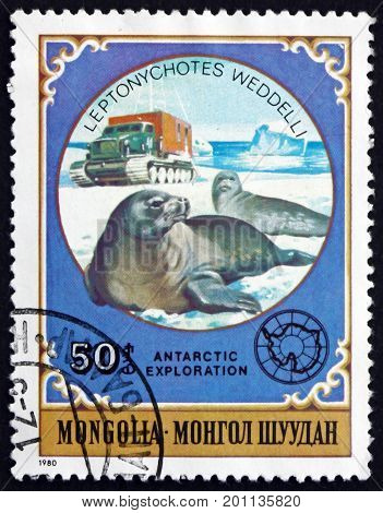 MONGOLIA - CIRCA 1980: a stamp printed in Mongolia shows Weddell Seal Leptonychotes Weddellii is a True Seal circa 1980