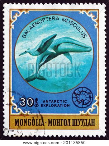 MONGOLIA - CIRCA 1980: a stamp printed in Mongolia shows Giant Blue Whale Balaenoptera Musculus is a Marine Mammal circa 1980