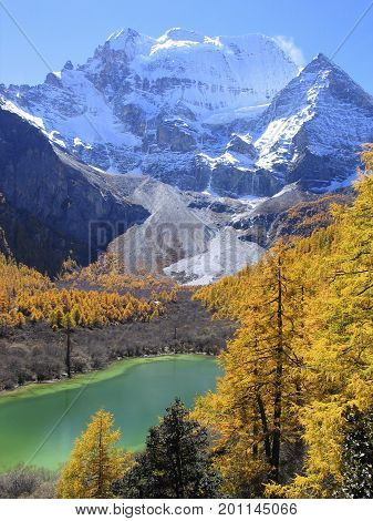 Xiannairi mountain in Yading National Nature Reserve, with lake and golden leaves in autumn