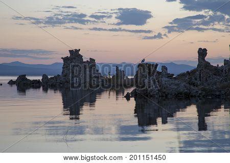 Daybreak At Mono Lake
