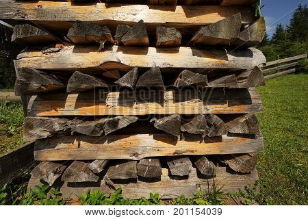 Woodpile in a forest in the Alps