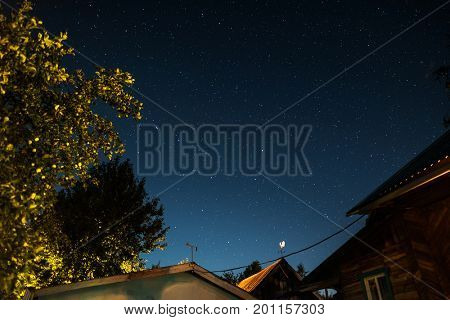 Starry sky and buildings and trees