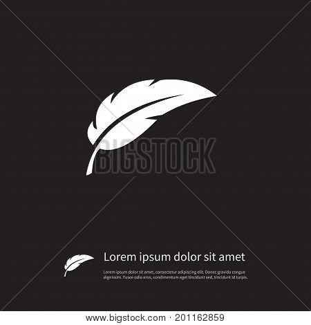 Pen Vector Element Can Be Used For Plume, Feather, Pen Design Concept.  Isolated Feather Icon.