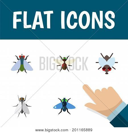 Flat Icon Housefly Set Of Bluebottle, Dung, Hum And Other Vector Objects