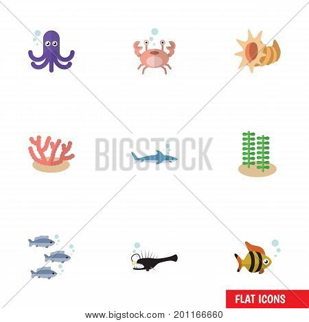 Flat Icon Sea Set Of Shark, Seashell, Algae And Other Vector Objects