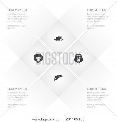 Icon Zoology Set Of Chimpanzee, Ape, Thorny And Other Vector Objects