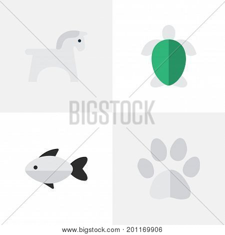 Elements Foot, Perch, Steed And Other Synonyms Fish, Tortoise And Steed.  Vector Illustration Set Of Simple Animals Icons.