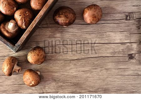 Freshly Harvest Mushrooms Spilling From A Wood Box, Corner Border Over A Rustic Wood Background