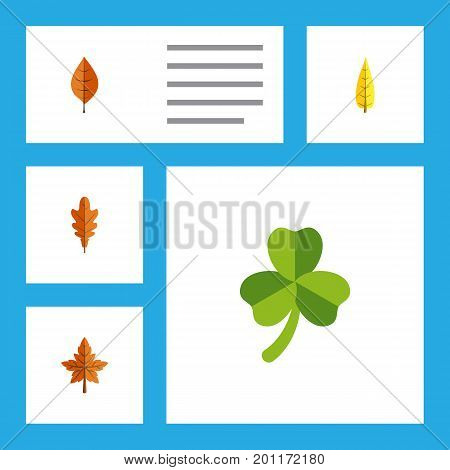 Flat Icon Foliage Set Of Linden, Foliage, Maple And Other Vector Objects