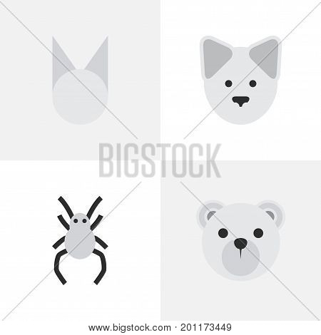 Elements Wolf , Tarantula , Panda Synonyms Panda, Wolf And Widow.  Vector Illustration Set Of Simple Fauna Icons.