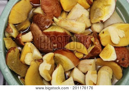 cepes, canned slices for pickling or marinading