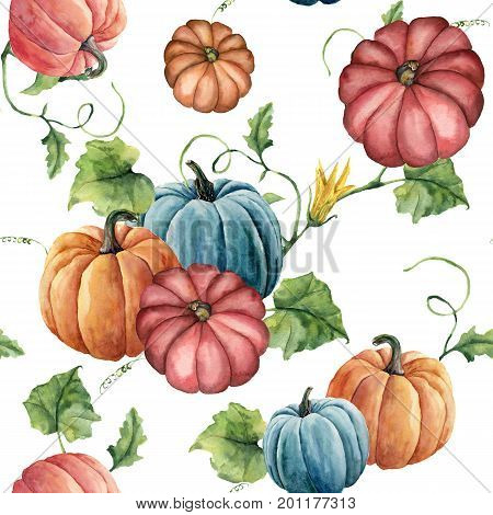 Watercolor bright pumpkin seamless pattern. Hand painted pumpkin ornament with flower, leaves and branch isolated on white background. Botanical illustration for design and fabric. Halloween print
