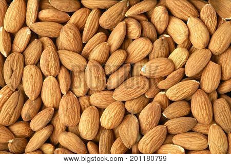 Texture background made of hulled almonds closeup