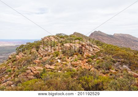On the Mount Ohlssen-Bagge trail at Wilpena Pound - Flinders Ranges, SA, Australia