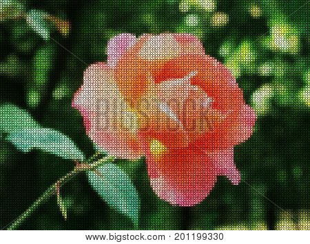 Illustration. Cross-stitch. Red rose on a green background.