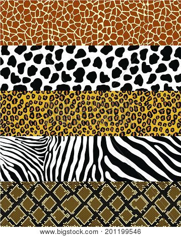 Animals skin seamless pattern set leopard,zebra,snake,cow,giraffe,animal, pattern, safari, vector, background, texture, tiger, leopard, print, skin, cat, illustration, zebra, seamless, fabric, stripes, jungle, fashion, cheetah, Africa, Asian, brown, desig