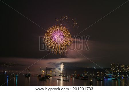 Colorful Bright Firework At Night At Summer Time.