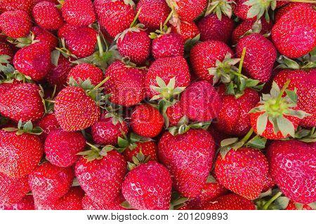 Sale Of Strawberries In The Eastern Markets In Turkey