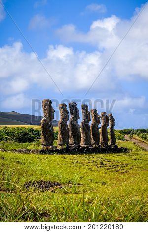 Moais Statues, Ahu Akivi, Easter Island