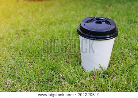 Hot Coffee Drink Disposable Cup On Green Grass Turf Field