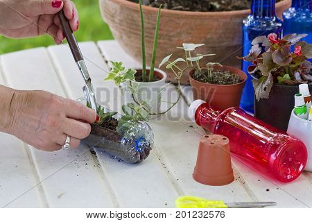 An image of items used in a gardening workshop