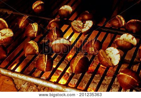 roasted cut chestnuts on grill over embers