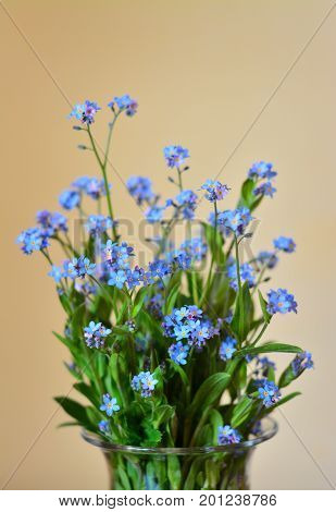 a bouquet of forget me not flowers