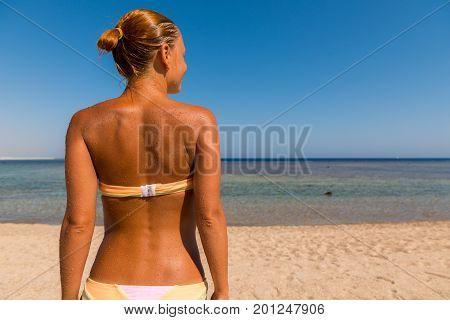 Slim sensuous woman looking at the sea shot from behind
