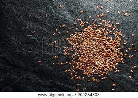 Flax seeds for germination on gray shale horizontal