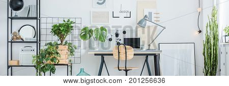 Interior With Desk And Monstera